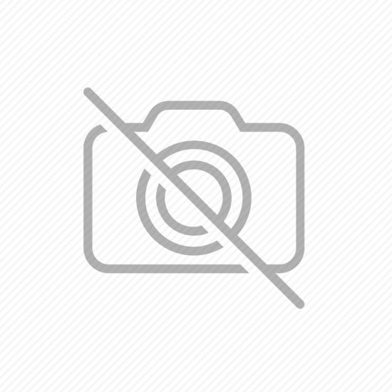 Τσάντα Νηπιαγωγείου με Ισοθερμική Θήκη για Τρόφιμα Dragon +3